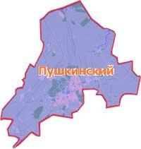 ремонт-стиральных-в-пушкинском-районе