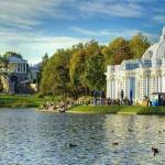 Пушкинский район и ремонт стиральной машины на дому