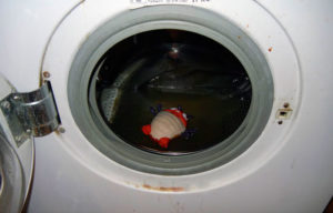 Не сливается вода с бака из-за забитого слива