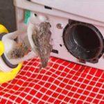 Почистить сливной фильтр стиральной Indesit своими руками. Инструкция +Фото